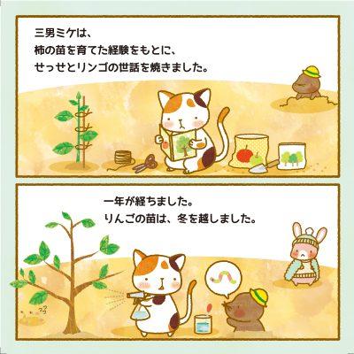 cat_p12