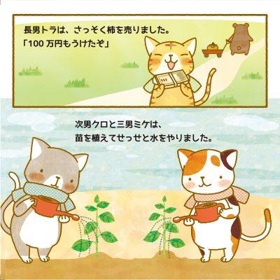 cat_p6