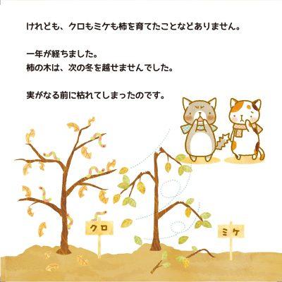cat_p7